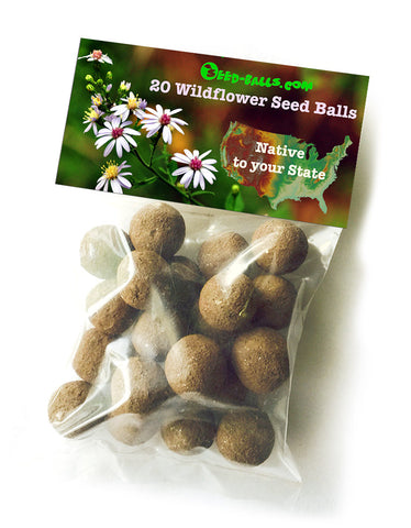 20 Native to your State Seed Balls