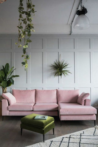 pink couch with green plants