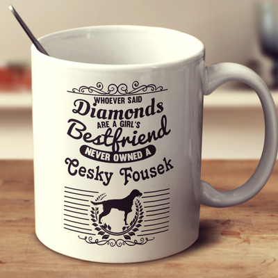 Whoever Said Diamonds Are A Girl's Bestfriend Never Owned A Cesky Fousek