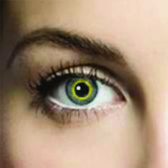 Allure Grey Coloured Contacts (Comfort)