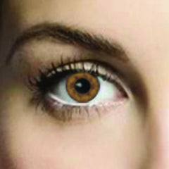 Amber Coloured Contacts (Comfort)