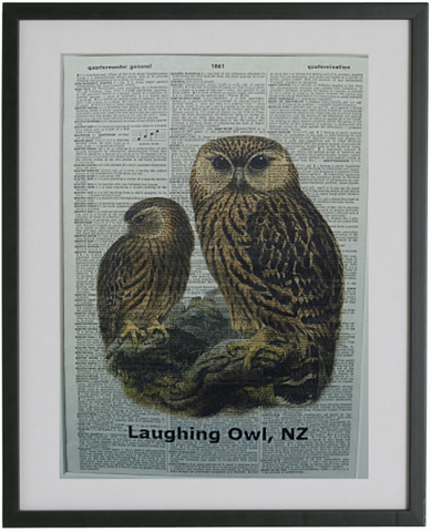 Laughing Owl Bird Print No.246, bird print