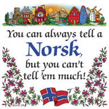 Norwegian Unique Magnet Tile (Tell A Norsk) - DutchNovelties