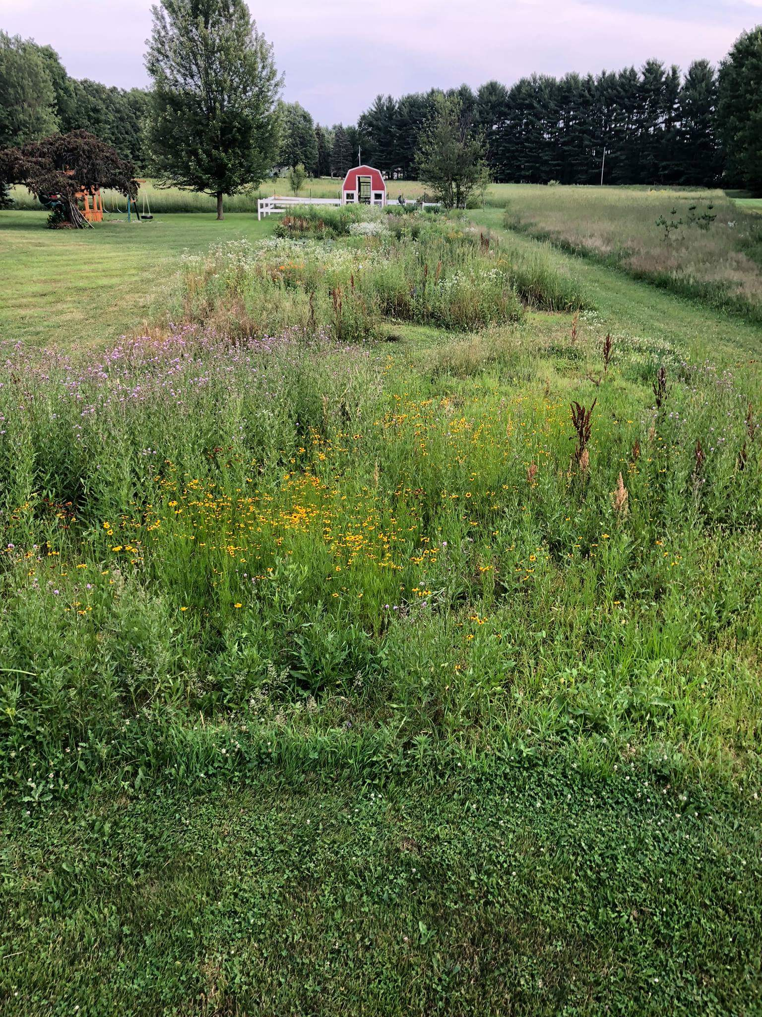 Prairie Walk 8/18/18 (1 - 4 PM)
