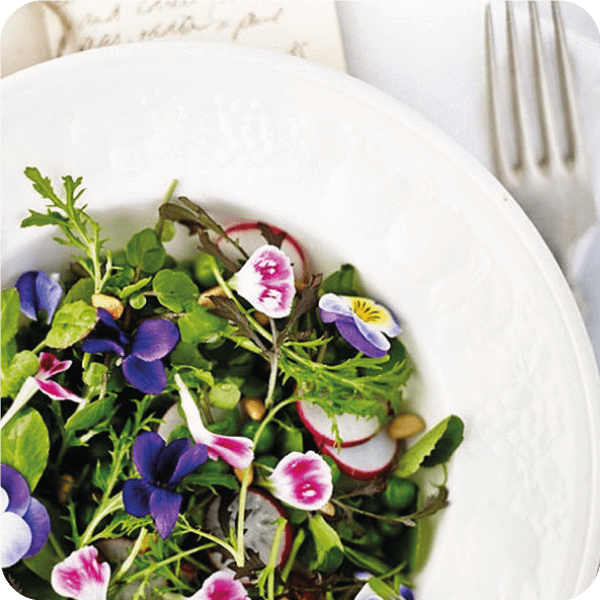 Five Edible Flowers for Healthy Summer Recipes