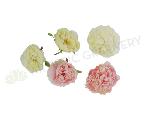 ACC0047 Single Peony Head 12cm (Availabe in 4 Colours)