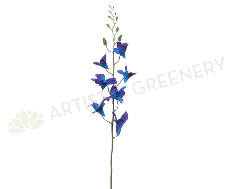 F0130 Galaxy Orchid / Blue Orchid 73cm