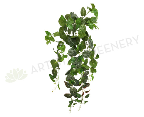 HP0034 Hanging Nerve Plant (White Veins) / Fittonia 80cm Real Touch
