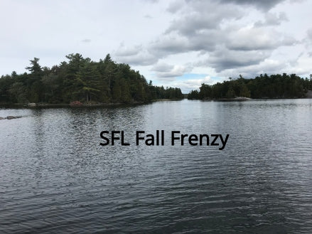 Fall Frenzy Tournaments