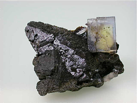 Fluorite with Sphalerite, Rosiclare Level Minerva #1 Mine, Ozark-Mahoning Company, Cave-in-Rock District, Southern Illinois, Mined c. 1992-1994, Tolonen Collection, Small Cabinet 4.0 x 5.5 x 8.0 cm, $350.  SOLD