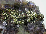 Fluorite and Sphalerite with Chalcopyrite, Rosiclare Level, North-End, Denton Mine, Ozark-Mahoning Company, Harris Creek District, Southern Illinois, Mined c. 1984-1985, Tolonen Collection, Medium Cab. 6.5 x 9.5 x 10.0 cmTy $2500. Online 1/18 SOLD