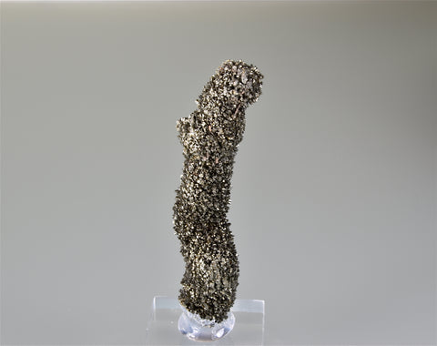 Marcasite, Midway Stone Quarry, Rock Island County, Illinois, Collected c. 1990, Holzner Collection, Miniature approx. 1.5 cm dia x 8.7 cm length, $225. Online 8/12