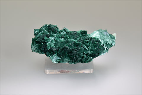 Malachite, Morenci, Arizona, Ralph Campbell Collection, Miniature 3.0 x 3.5 x 9.0 cm, $125.  Online 10/5.