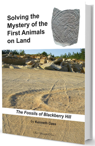 Solving the Mystery of the First Animals on Land: The Fossils of Blackberry Hill