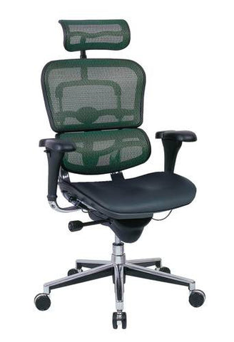 Ergohuman High-Back Chair, Leather Seat, Mesh Back with Adjustable Headrest