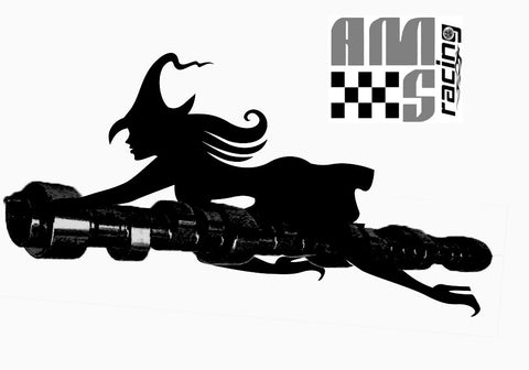 "AMS Racing Stage II Necromancer ""Choppy Idle"" Camshaft GM LS LS1 4.8 5.3 5.7 6.0"