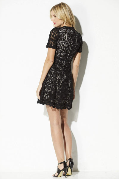BB Dakota - Lace Overlay Fit and Flare Dress - rear