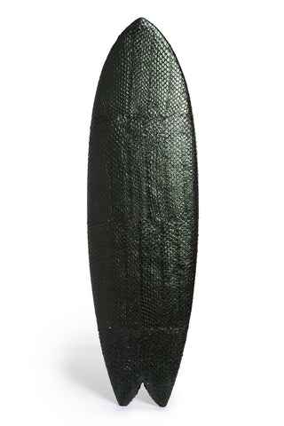 Surfboard in Pirarcucu Fish Skin