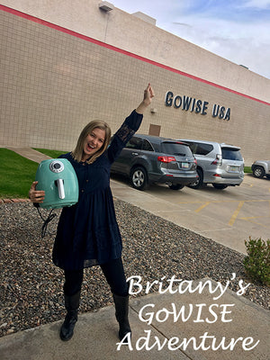Britany's GoWISE Adventure