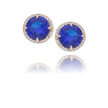 Blue and Gold Earrings NGR0008