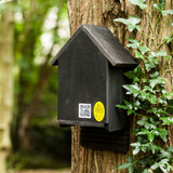 Cavity Bat Box Black Bat Box