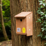 tree sparrow nest box on tree