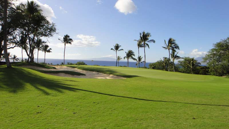 Wailea Gold perfect fairways and greens