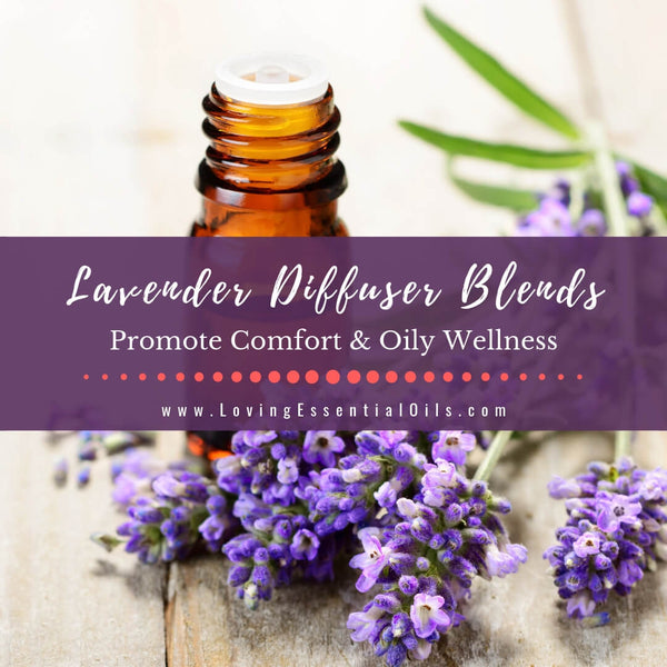 Lavender Diffuser Blends - Promote Comfort & Oily Wellness