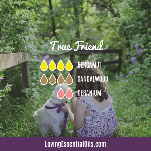 Bergamot Diffuser Blends - Relax and Uplift Your Senses! by Loving Essential Oils | True Friend with bergamot, sandalwood, and geranium essential oil