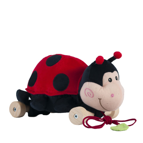 Ladybug on the wheels / Coccinelle sur les roues (25 cm)