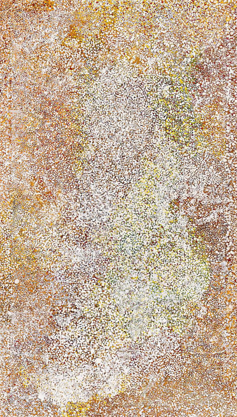 Polly Ngale (Kngale), 'Wild Plum', 2005, 05B03, 121x210cm
