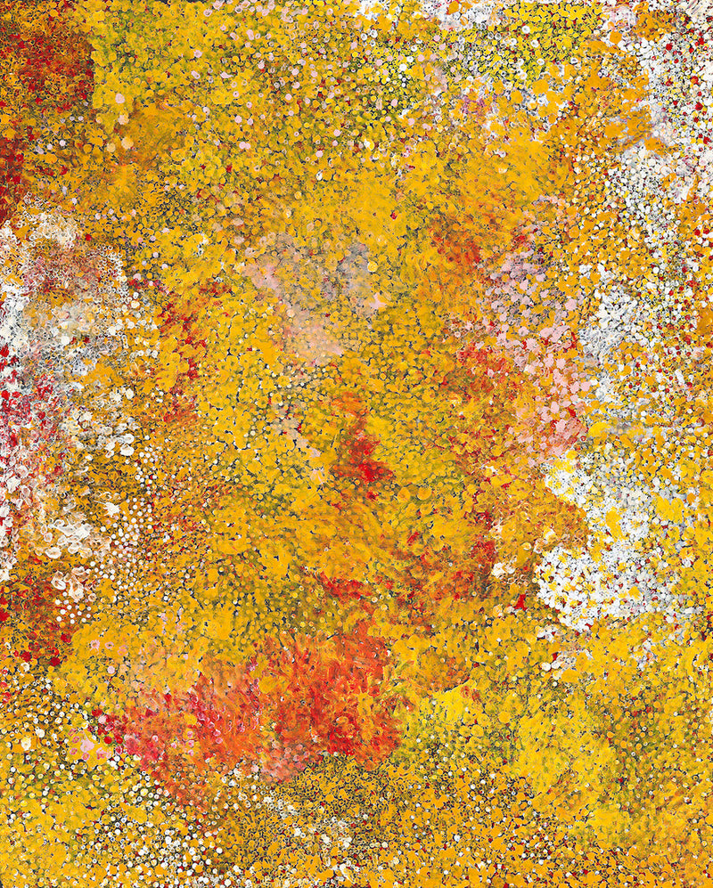 Polly Ngale (Kngale), 'Wild Plum', 2005, 05L012, 120x150cm - Delmore Gallery
