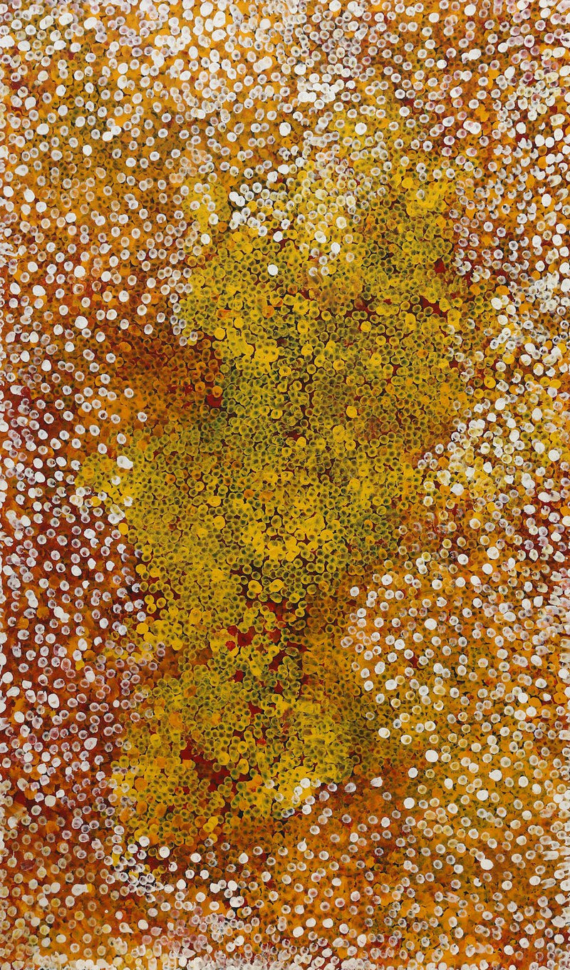 Polly Ngale (Kngale), 'Wild Plum', 2008, 08H43, 90x150cm - Delmore Gallery