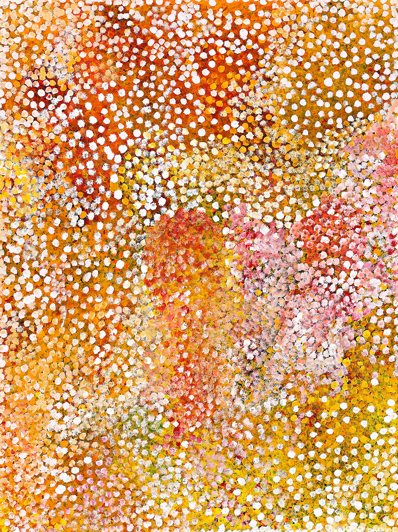Polly Ngale (Kngale), 'Wild Plum', 2010, 10A063, 90x120cm
