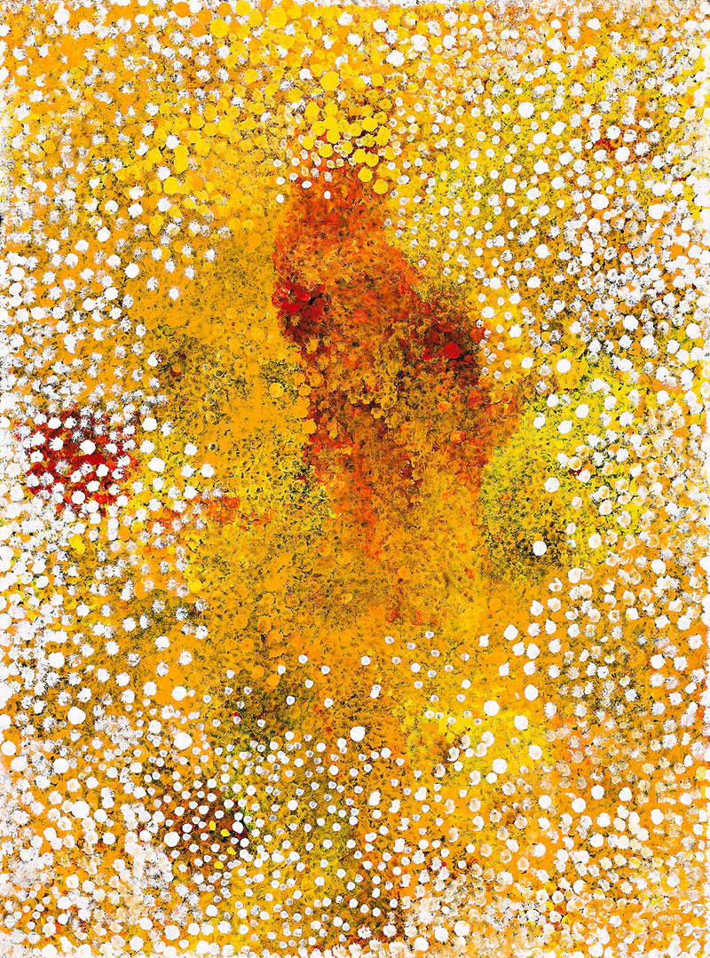 Polly Ngale (Kngale), 'Wild Plum', 2010, 10A070, 90x120cm