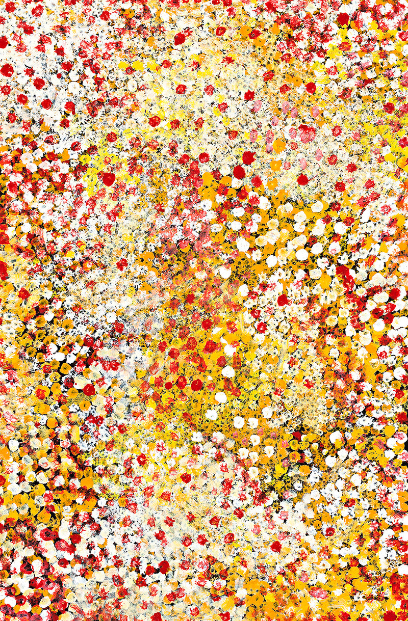 Polly Ngale (Kngale), 'Wild Plum', 2010, 10B006, 60x91cm