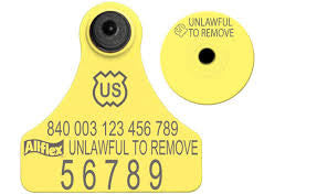 ALLFLEX USDA 840 Visual Tamperproof Junior Numbered ear tag with Button