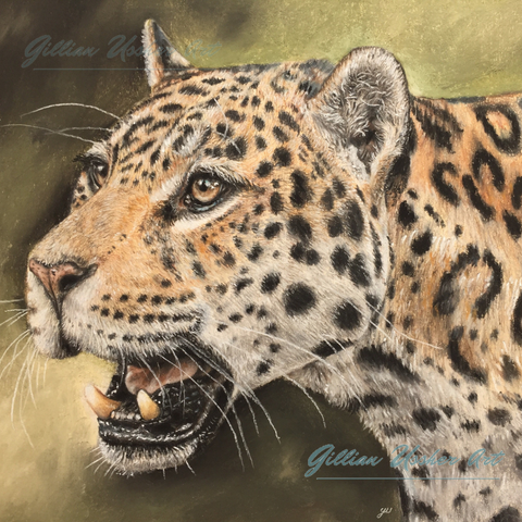 Jaguar Original Pastel
