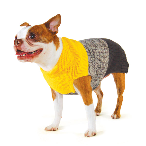 COLOR BLOCK DOG SWEATER, Sweaters - Bones Bizzness