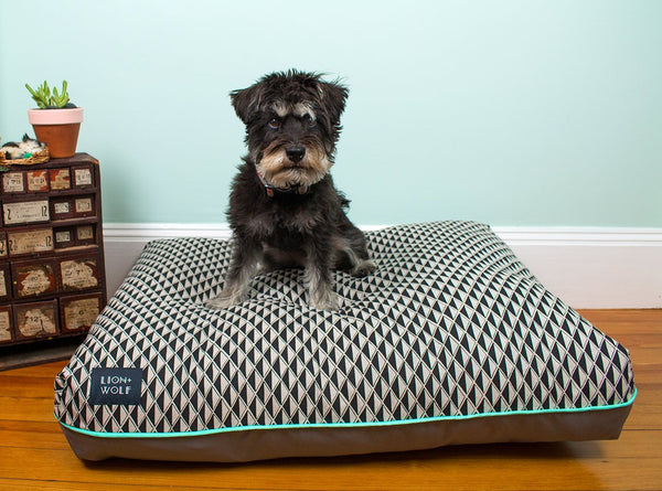 GEM DOG BED - ONYX | LIMITED EDITION, Beds - Bones Bizzness