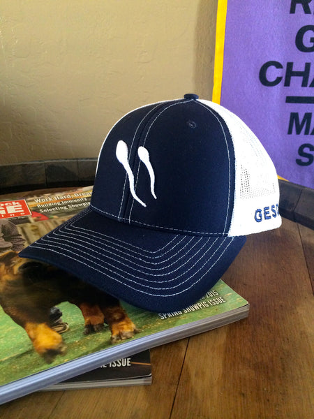 Richardson Navy Snap Back With White Mesh Hat