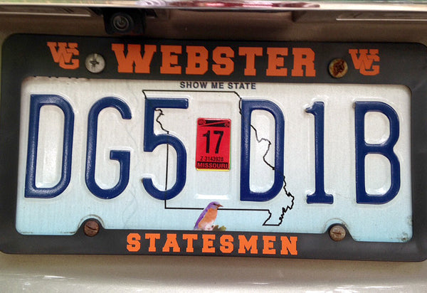 Webster Statesmen Orange & Black License Plate Frame