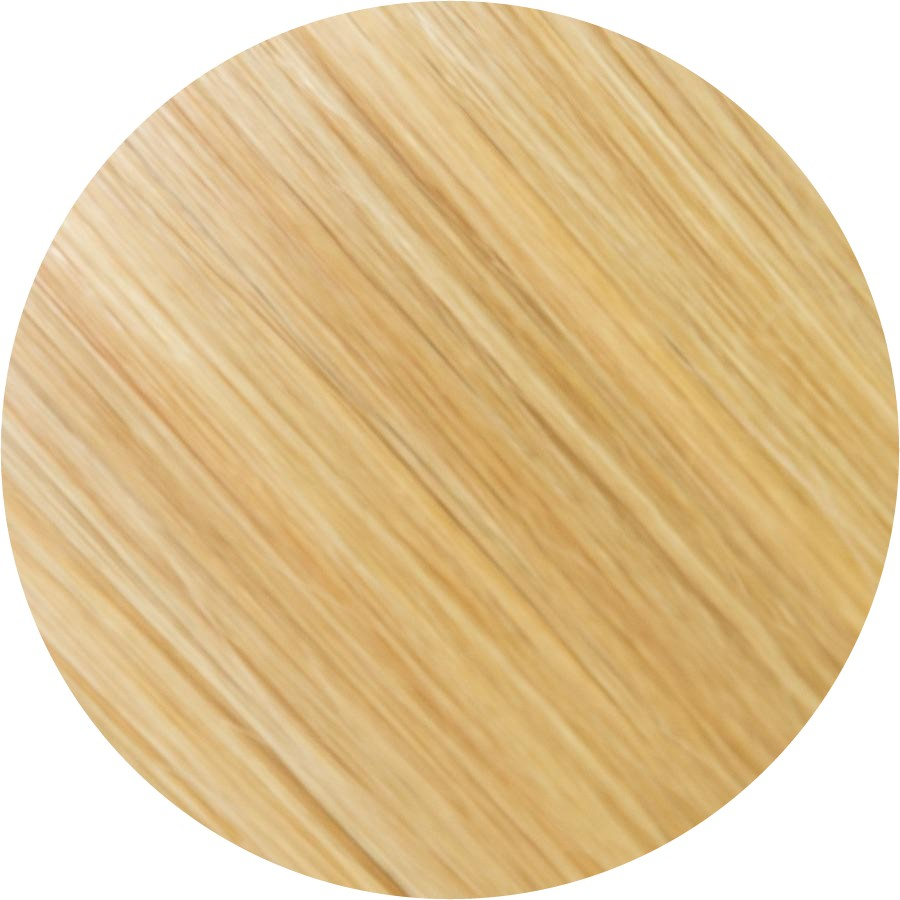 #16/613 Ash Blonde & Light Blonde