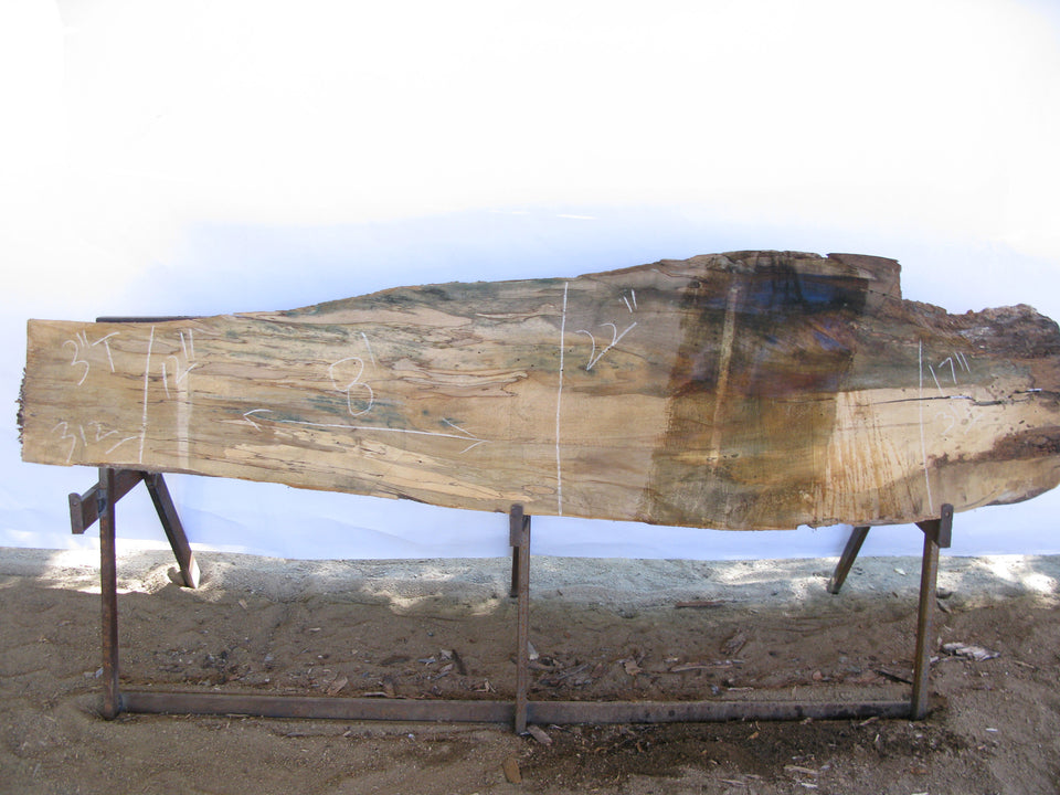 "Spalted Maple C Slab 3"" x 17"" x 8' MAP-312"
