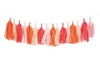 Tissue Paper Tassel Garland Kit - Flamingo
