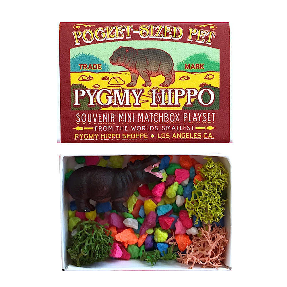Pocket Pet Pygmy Hippo