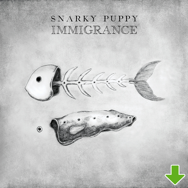 Immigrance [FLAC Download]