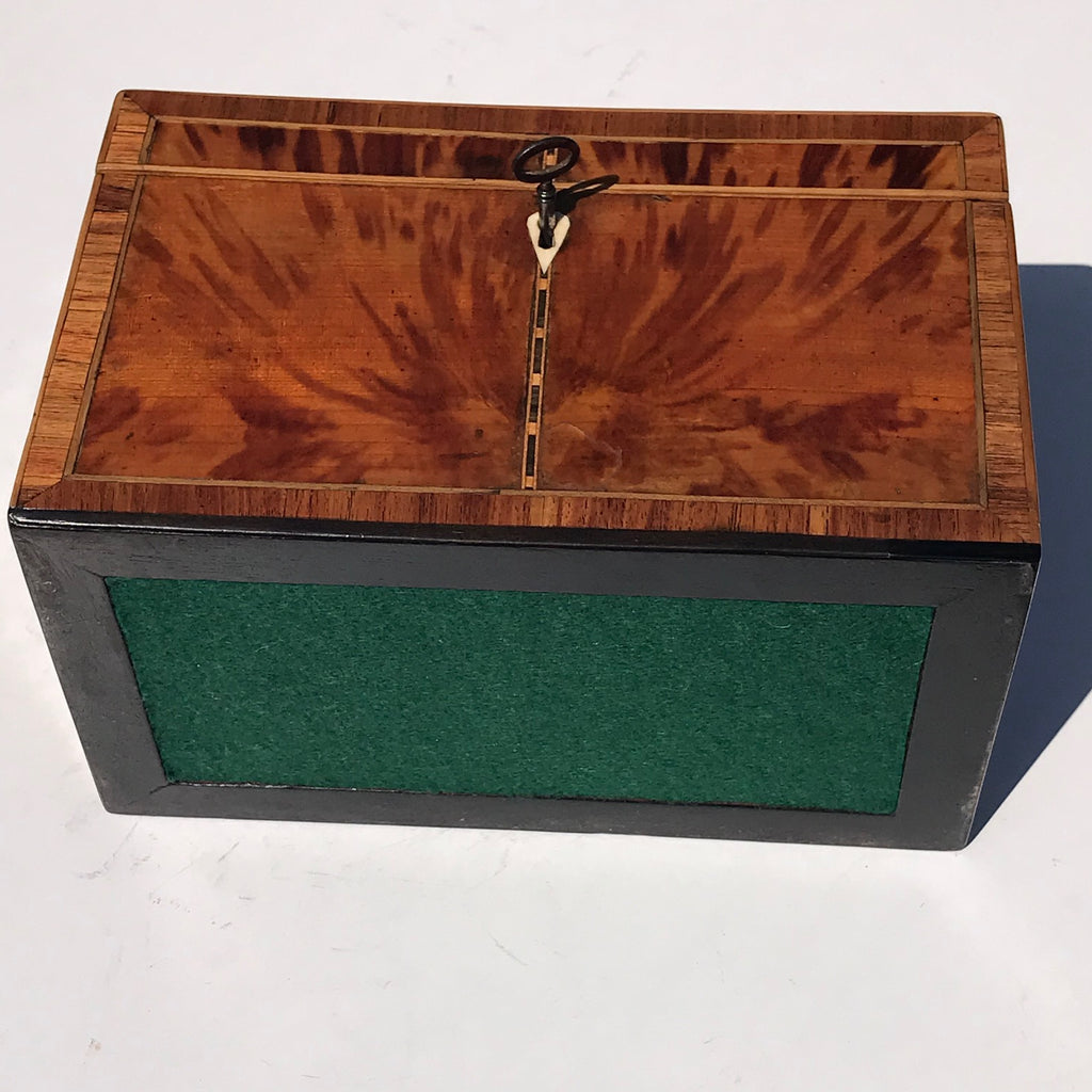 George III Tortoiseshell Tea Caddy - Underside View - 9