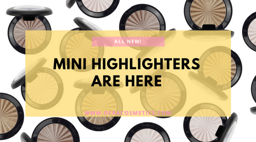 ALL NEW! MINI Highlighters