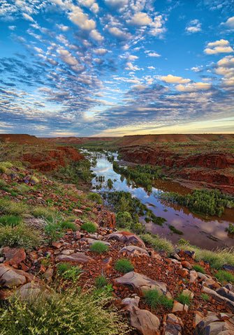 Fortescue River Millstream National Park